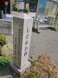 3-P1530491.JPG